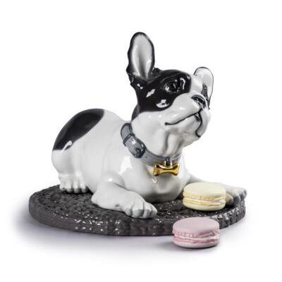 French Bulldog With Macarons