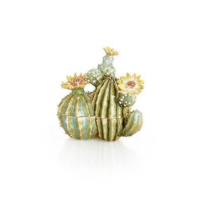 Spike Cactus Box