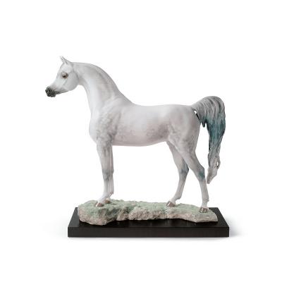 Arabian Pure Breed Figurine - Limited Edition